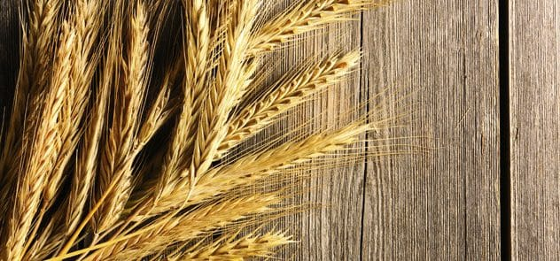 Grains on a wooden background