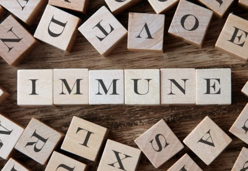 How exactly do we develop immunity?