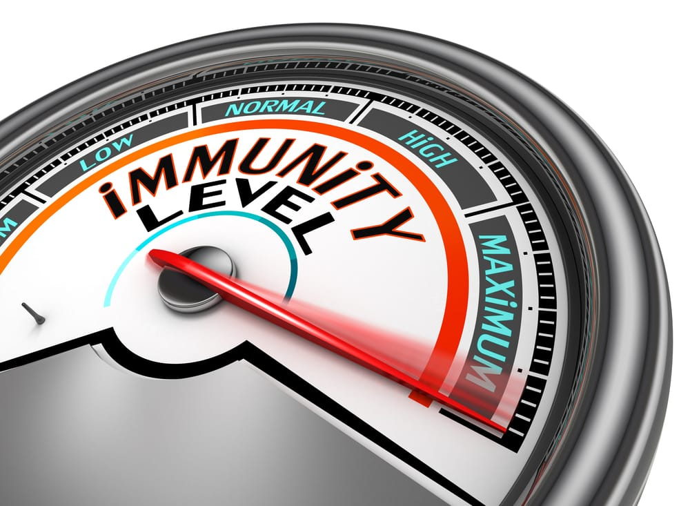 What is my immune system and why is it so important?