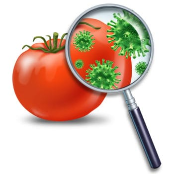 foodborne-infections
