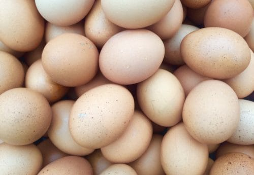 The health benefits of protein-packed eggs