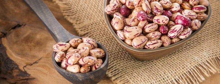 Pinto beans for protein, calcium and iron