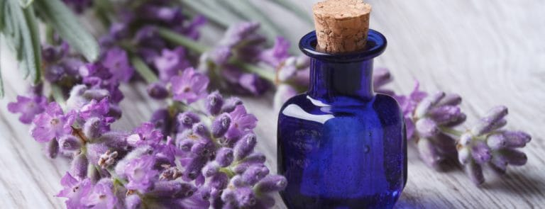 Lavender and a small blue bottle of lavender oil on a wooden surface