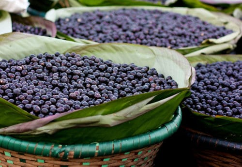 Why Maqui Berries Acai Berries Are The Ultimate Superfoods