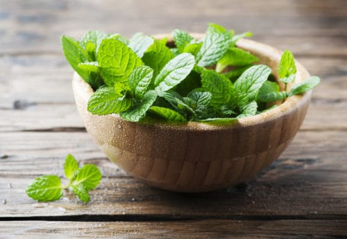 DIY Aromatherapy: power up your shower with peppermint