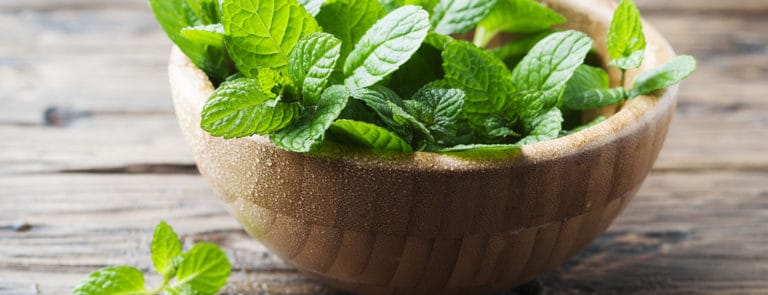 Fresh mint in a wooden bowl