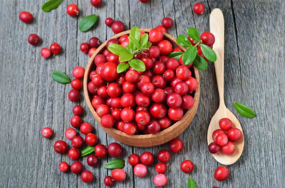 Cranberry – your secret weapon against UTIs