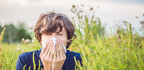 What's causing my hayfever?