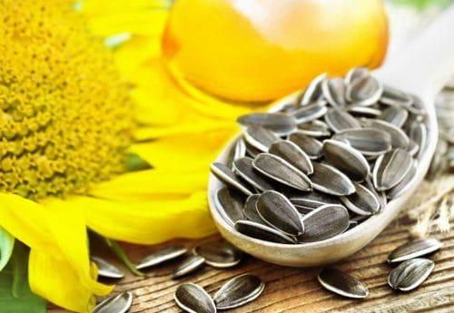 Vitamin F in sunflower seeds