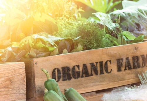 Easy ways to go organic