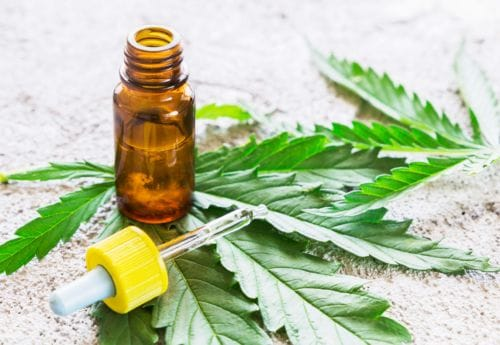 CBD oil from Holland & Barrett