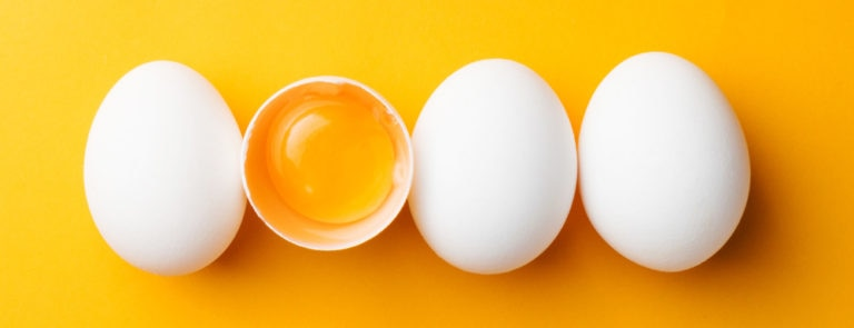 egg yolks are a good source of lecithin