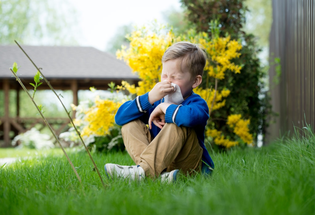 Hay fever in children: How do I know if my baby or child has hay fever?