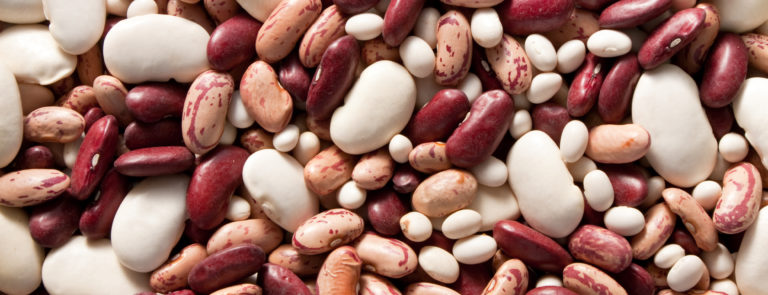 beans help to stop bloating
