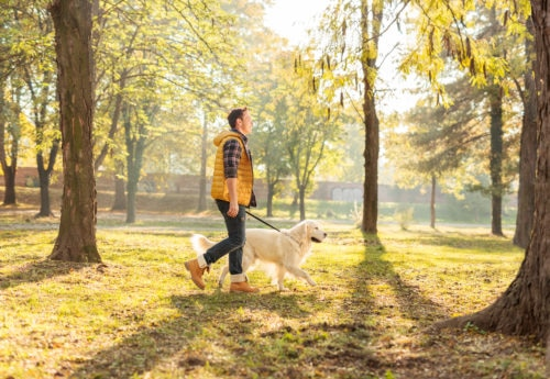 a man brisk walking with a dog to help naturally relieve anxiety