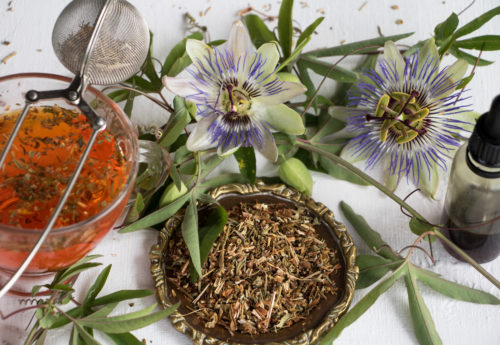 Your guide to herbal tea